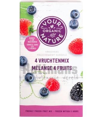 4-vruchtenmix (diepvries)